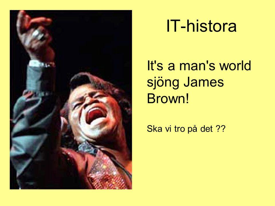 IT-histora It s a man s world sjöng James Brown! Ska vi tro på det ??