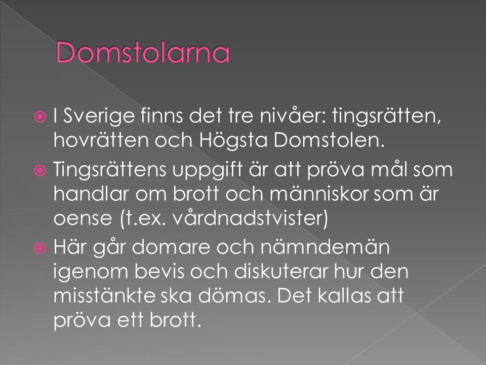  I Sverige finns det tre nivåer: tingsrätten, hovrätten och Högsta Domstolen.  Tingsrättens uppgift är att pröva mål som handlar om brott och männis
