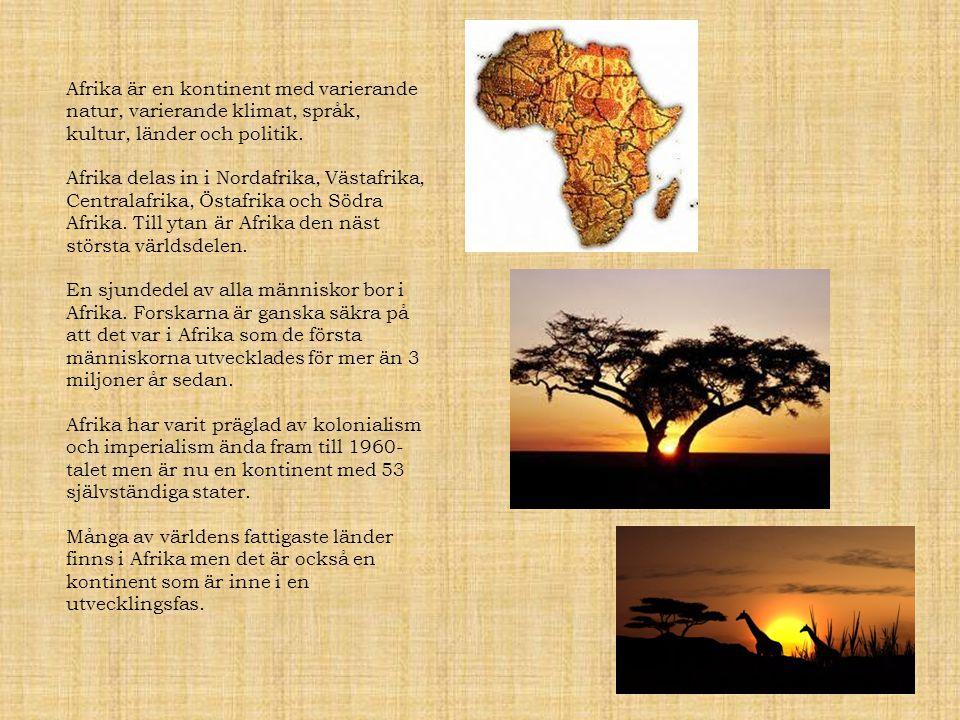 Afrika är en kontinent med varierande natur, varierande klimat, språk, kultur, länder och politik. Afrika delas in i Nordafrika, Västafrika, Centralaf