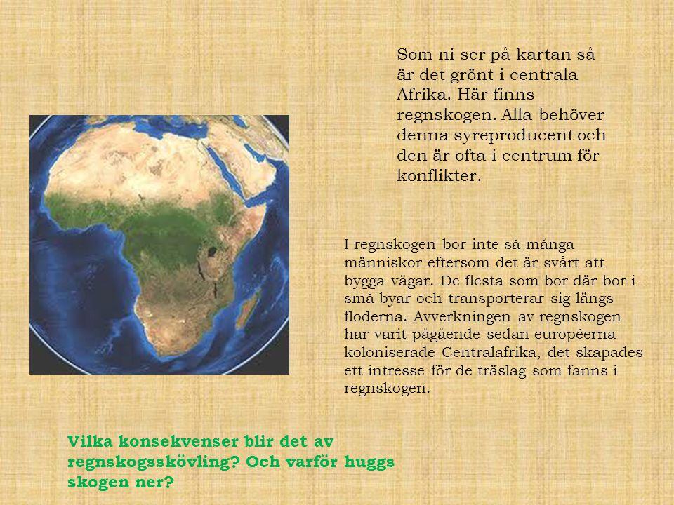 Som ni ser på kartan så är det grönt i centrala Afrika. Här finns regnskogen. Alla behöver denna syreproducent och den är ofta i centrum för konflikte