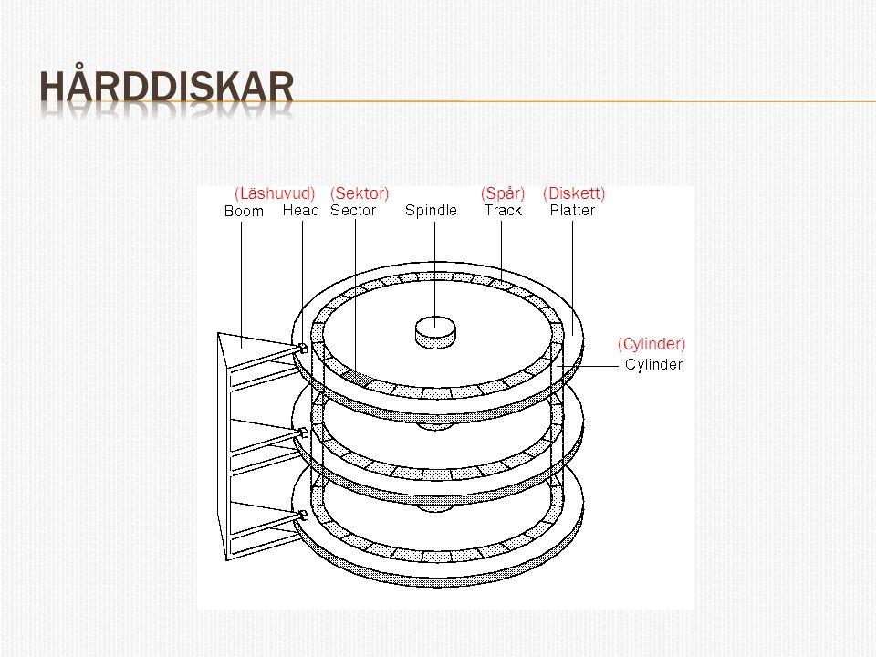 (Läshuvud)(Sektor)(Spår) (Cylinder) (Diskett)