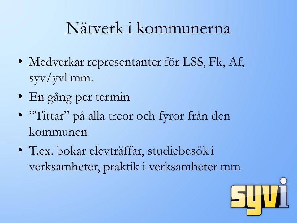 Nätverk i kommunerna Medverkar representanter för LSS, Fk, Af, syv/yvl mm.