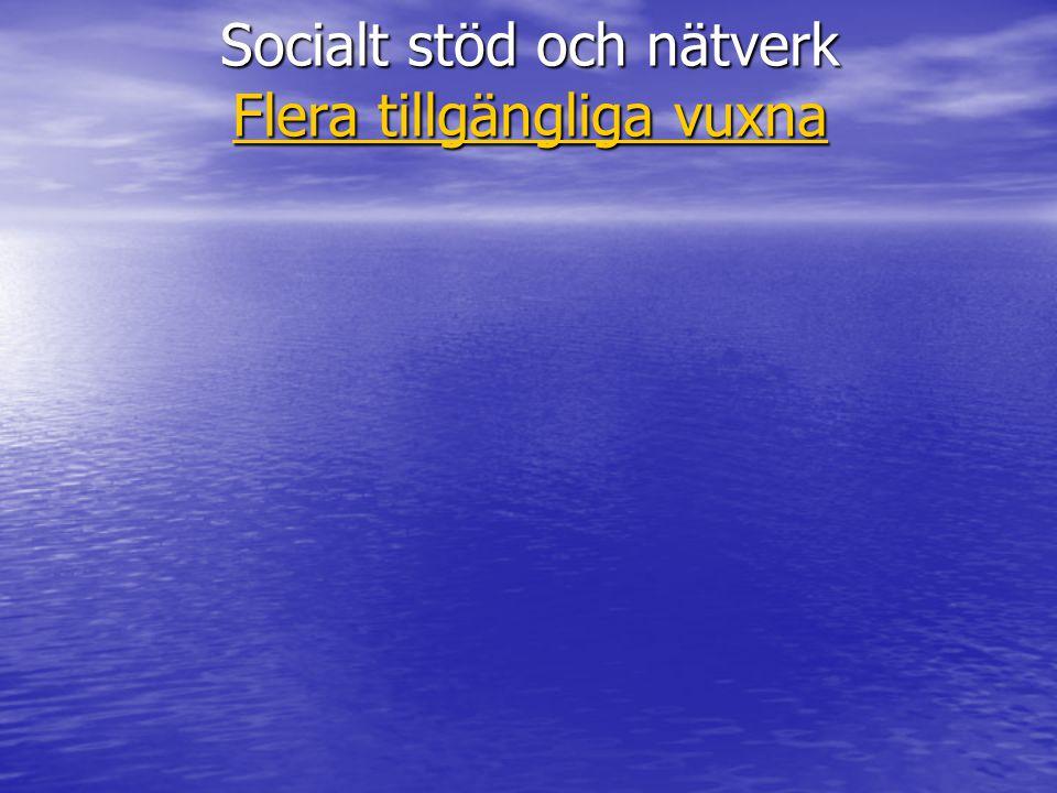 Socialt stöd och nätverk Flera tillgängliga vuxna Flera tillgängliga vuxna Flera tillgängliga vuxna