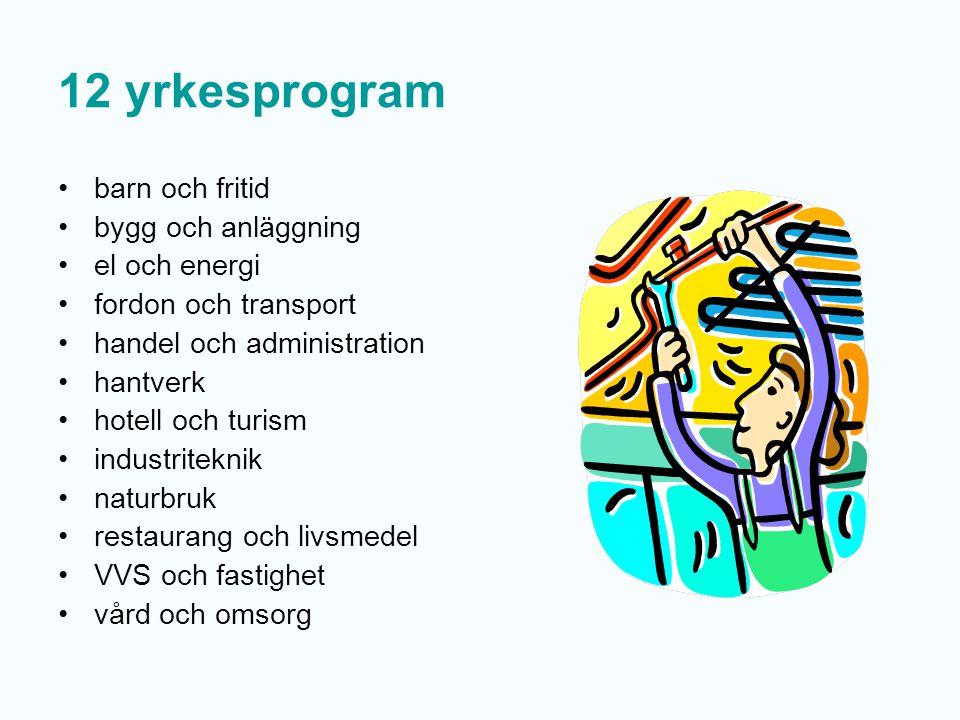 6 högskoleförberedande program ekonomiprogrammet estetiska programmet humanistiska programmet naturvetenskapsprogrammet samhällsvetenskapsprogrammet teknikprogrammet