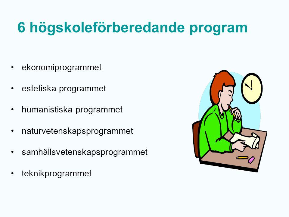 Behörighet svenska/svenska som andraspråk engelska matematik yrkesprogram + 5 ämnen högskoleförberedande program + 9 ämnen NA+TE=fy, ke, biEK+HU+SA=ge, hi, re, sh