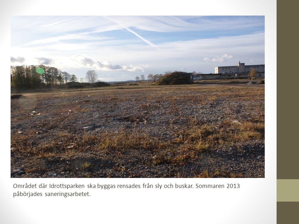 Området där Idrottsparken ska byggas rensades från sly och buskar.