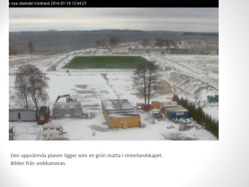 Den uppvärmda planen ligger som en grön matta i vinterlandskapet. Bilden från webkameran.