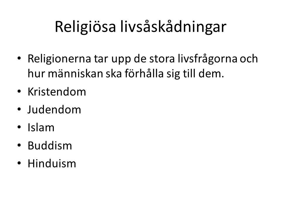 Religiösa livsåskådningar Religionerna tar upp de stora livsfrågorna och hur människan ska förhålla sig till dem. Kristendom Judendom Islam Buddism Hi