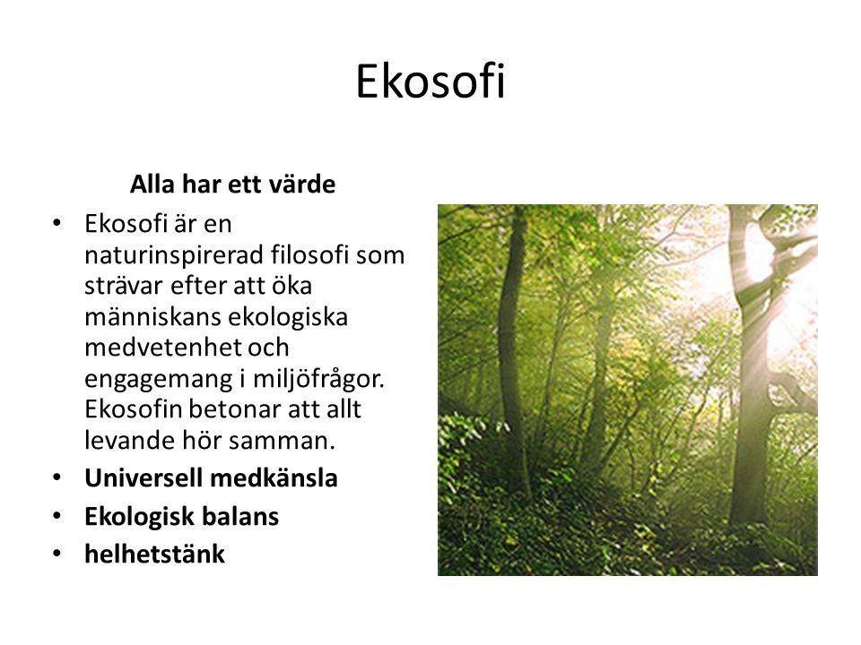Ekosofi Alla har ett värde Ekosofi är en naturinspirerad filosofi som strävar efter att öka människans ekologiska medvetenhet och engagemang i miljöfr