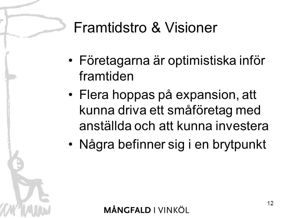 12 Framtidstro & Visioner Företagarna är optimistiska inför framtiden Flera hoppas på expansion, att kunna driva ett småföretag med anställda och att kunna investera Några befinner sig i en brytpunkt
