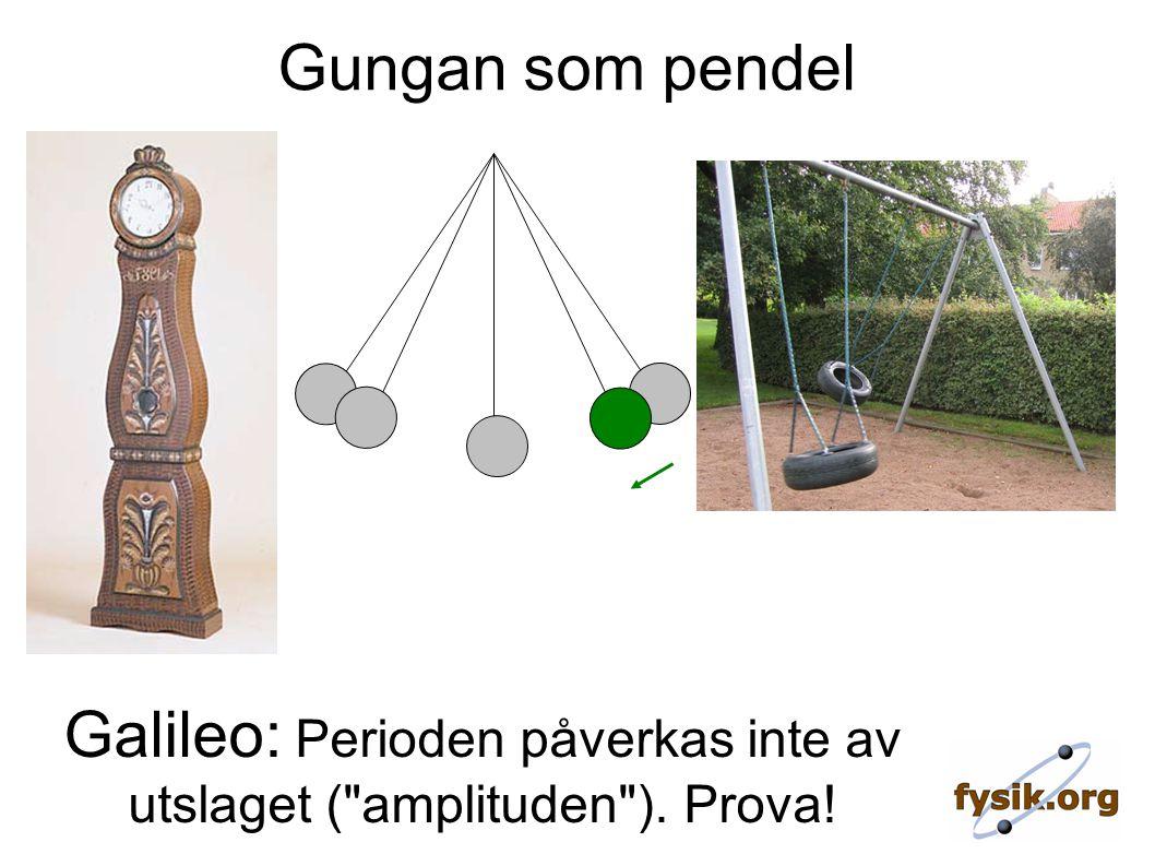 Gungan som pendel Galileo: Perioden påverkas inte av utslaget ( amplituden ). Prova!