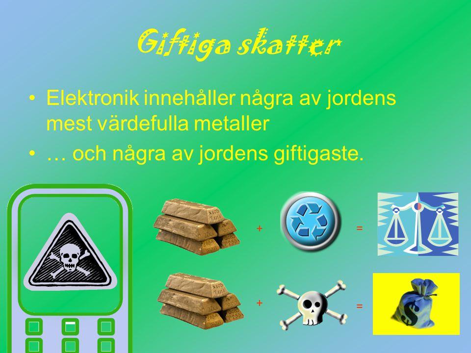 Giftiga skatter Elektronik innehåller några av jordens mest värdefulla metaller … och några av jordens giftigaste.