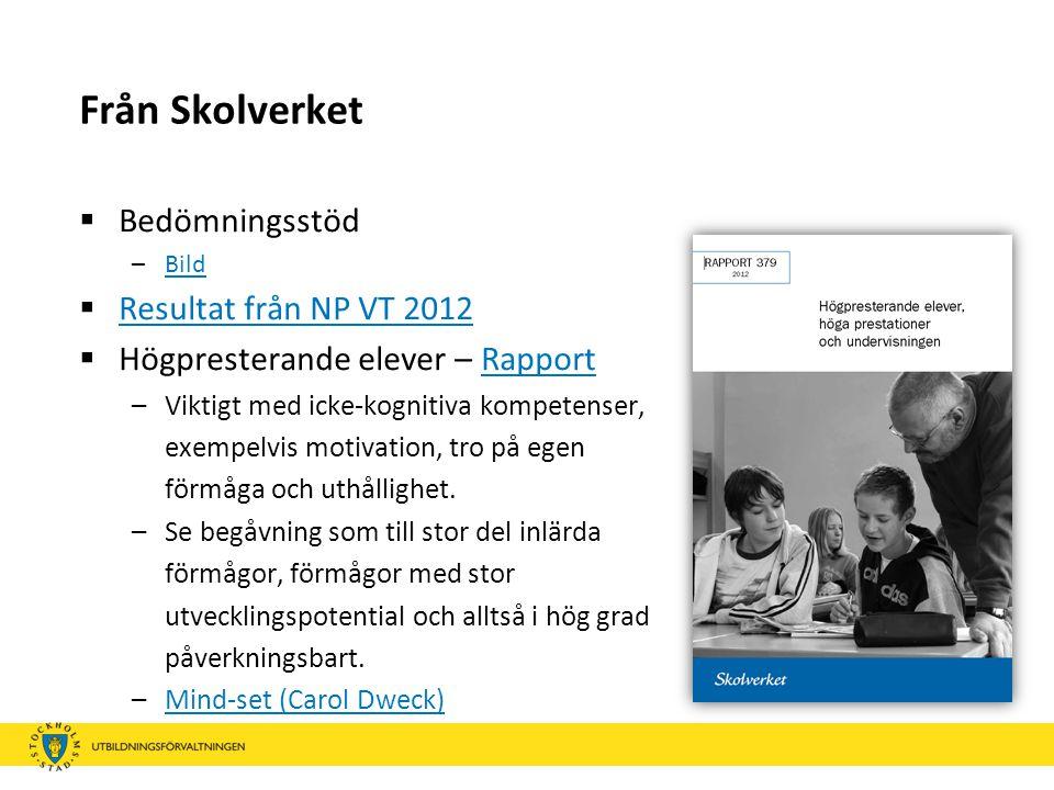 Från Skolverket  Bedömningsstöd –BildBild  Resultat från NP VT 2012 Resultat från NP VT 2012  Högpresterande elever – RapportRapport –Viktigt med i