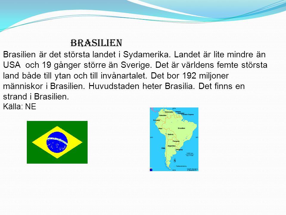 BRASILIEN Brasilien är det största landet i Sydamerika. Landet är lite mindre än USA och 19 gånger större än Sverige. Det är världens femte största la
