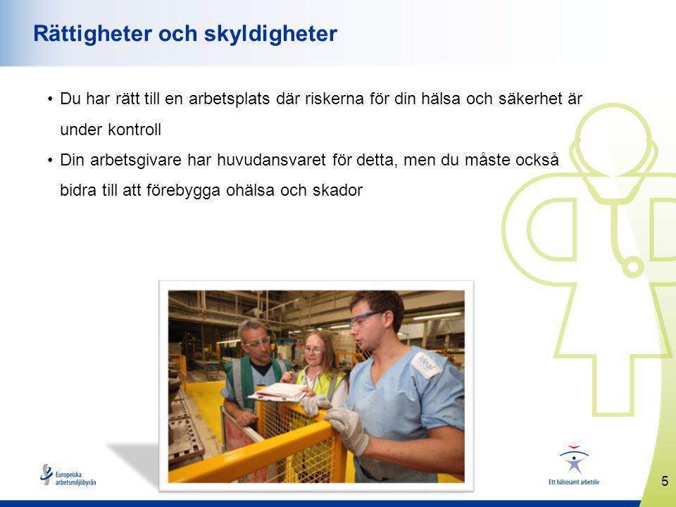 5 www.healthyworkplaces.eu Rättigheter och skyldigheter Du har rätt till en arbetsplats där riskerna för din hälsa och säkerhet är under kontroll Din arbetsgivare har huvudansvaret för detta, men du måste också bidra till att förebygga ohälsa och skador