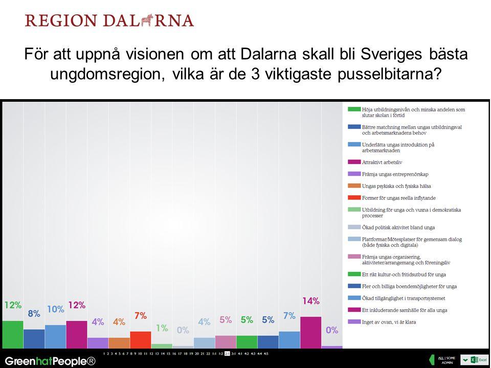 För att uppnå visionen om att Dalarna skall bli Sveriges bästa ungdomsregion, vilka är de 3 viktigaste pusselbitarna.