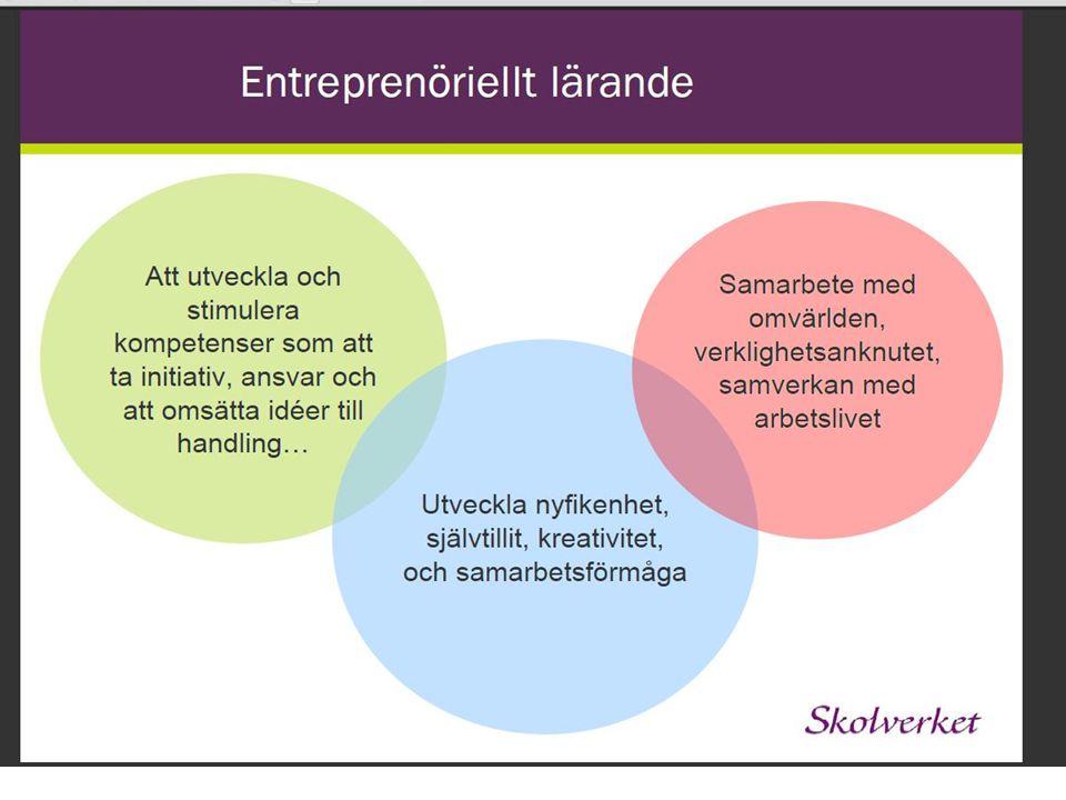 Plattform för entreprenöriellt lärande i Norrbotten - en dynamisk och hållbar plattform där samhällets aktörer kan samverka och agera och där det entreprenöriella lärandet är drivkraften för utveckling och konkurrenskraft i det framtida Norrbotten.