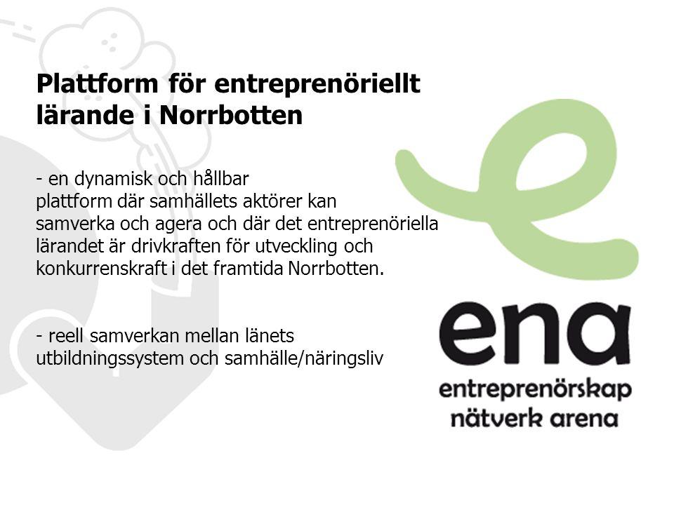 Det innebär att - elever har möjlighet att utveckla sina entreprenöriella förmågor - lärare och skolledare känner självförtroende, skapar kunskap om och organiserar för entreprenöriellt lärande - näringslivet och andra aktörer i samhället deltar aktivt och är en del av den entreprenöriella lärmiljön Teknikens Hus tillsammans med länets aktörer är plattformen för arbetet med ENA