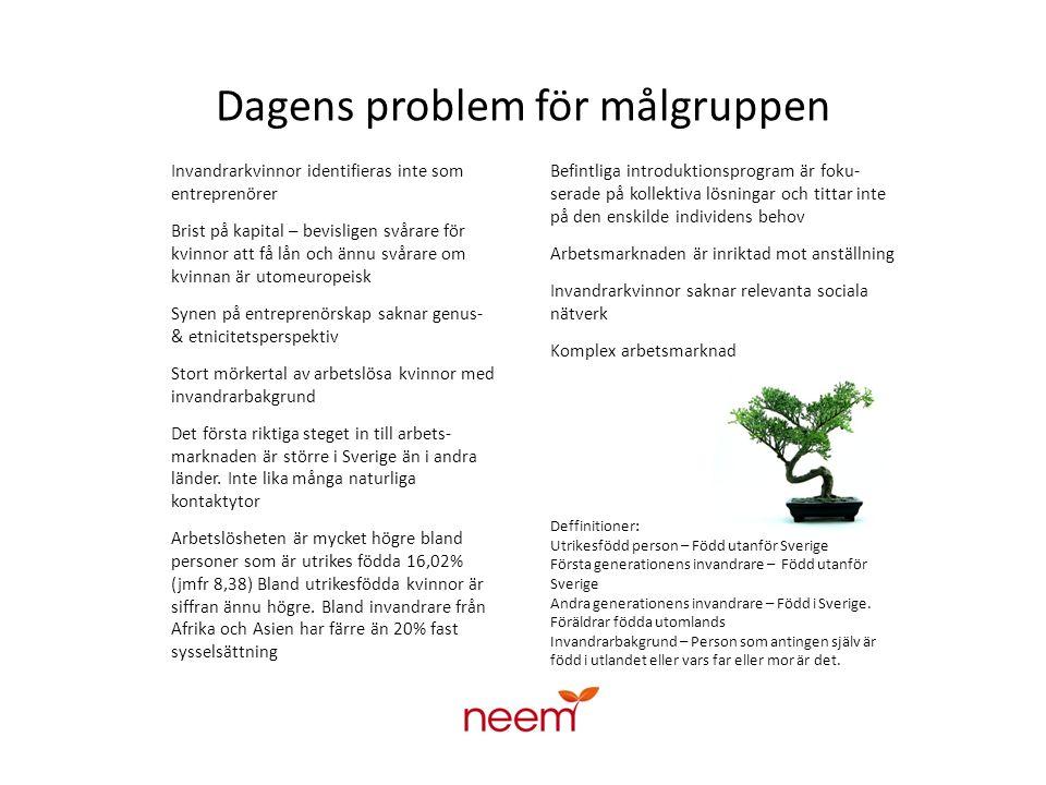 Dagens problem för målgruppen Invandrarkvinnor identifieras inte som entreprenörer Brist på kapital – bevisligen svårare för kvinnor att få lån och ännu svårare om kvinnan är utomeuropeisk Synen på entreprenörskap saknar genus- & etnicitetsperspektiv Stort mörkertal av arbetslösa kvinnor med invandrarbakgrund Det första riktiga steget in till arbets- marknaden är större i Sverige än i andra länder.