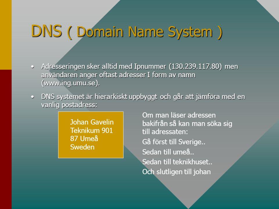 DNS ( Domain Name System ) •Adresseringen sker alltid med Ipnummer (130.239.117.80) men användaren anger oftast adresser I form av namn (www.ing.umu.s