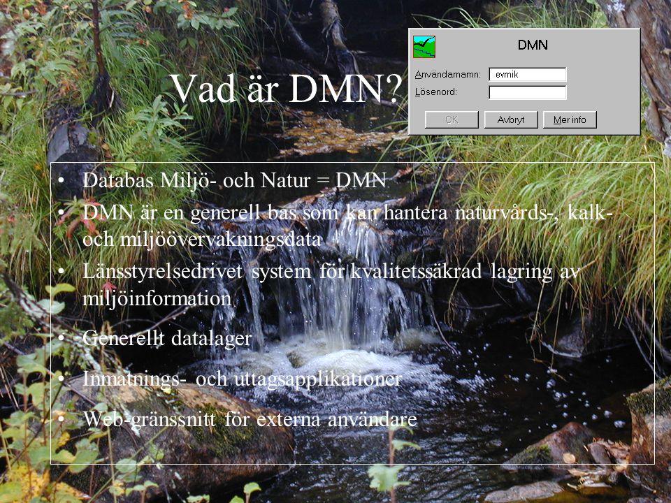 Vad är DMN.