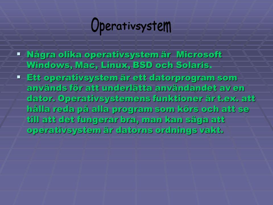 Man delar upp programmet i 2 olika ämnen 1.Systemprogram – Operativsystem m.m. 2. Applikationsprogram – Word, Excel, Power Point, helt enkelt olika ti