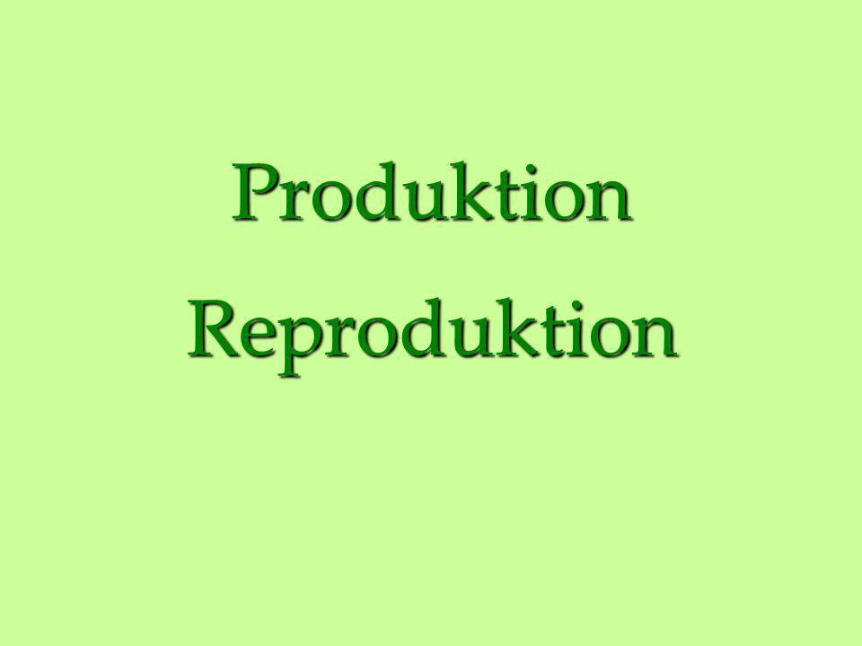Produktion Reproduktion