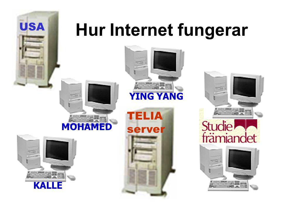 Hur Internet fungerar TELIA server USA KALLE MOHAMED YING YANG