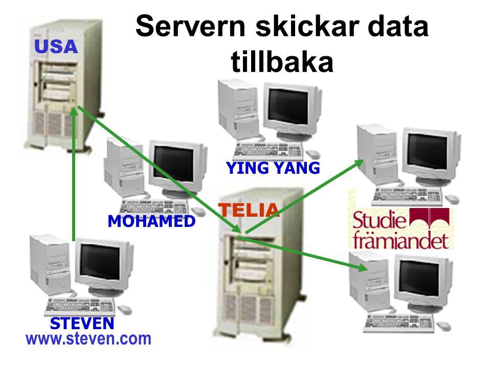 Servern skickar data tillbaka TELIA USA STEVEN MOHAMED YING YANG www.steven.com