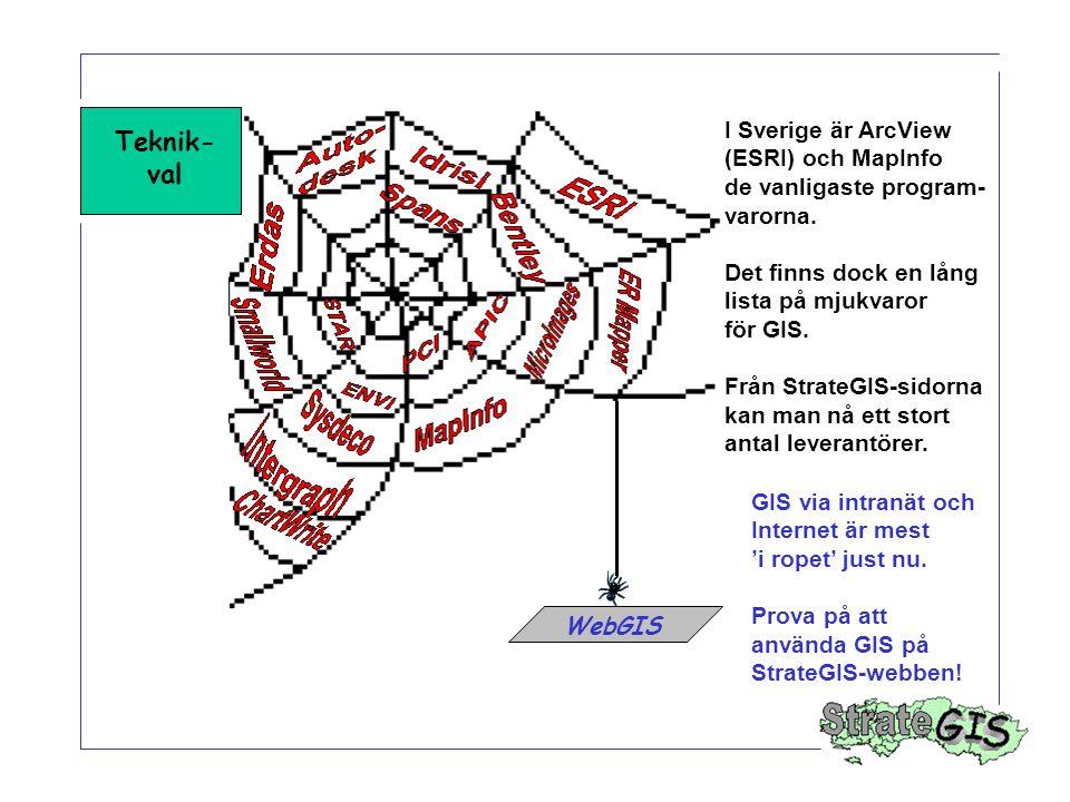 Teknik- val WebGIS I Sverige är ArcView (ESRI) och MapInfo de vanligaste program- varorna. Det finns dock en lång lista på mjukvaror för GIS. Från Str
