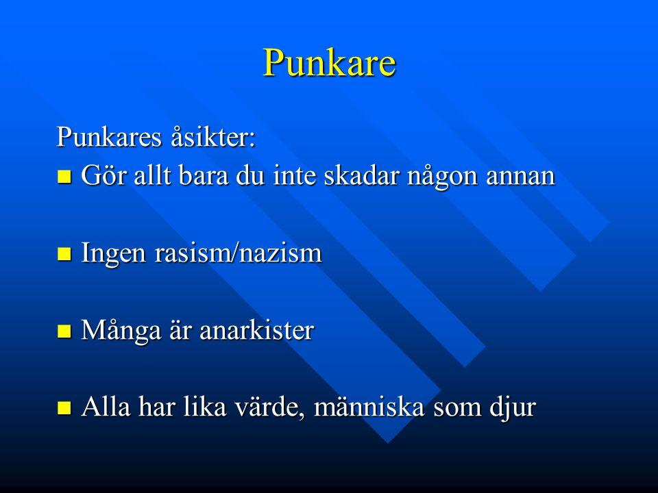 Punkare Punkares åsikter:  Gör allt bara du inte skadar någon annan  Ingen rasism/nazism  Många är anarkister  Alla har lika värde, människa som djur