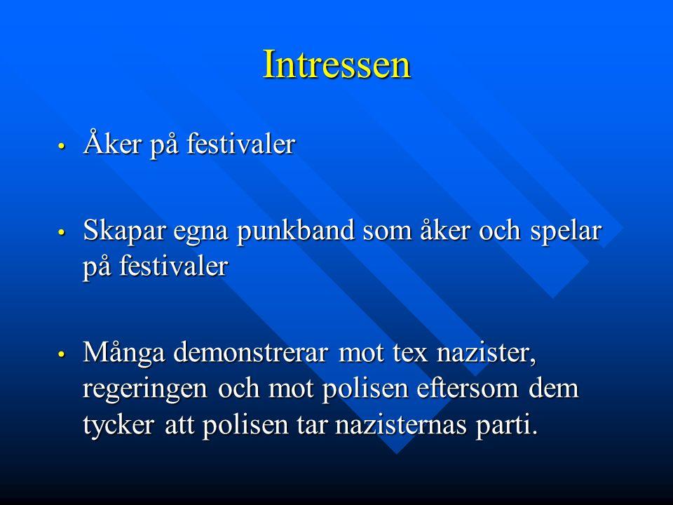 Intressen • Åker på festivaler • Skapar egna punkband som åker och spelar på festivaler • Många demonstrerar mot tex nazister, regeringen och mot poli