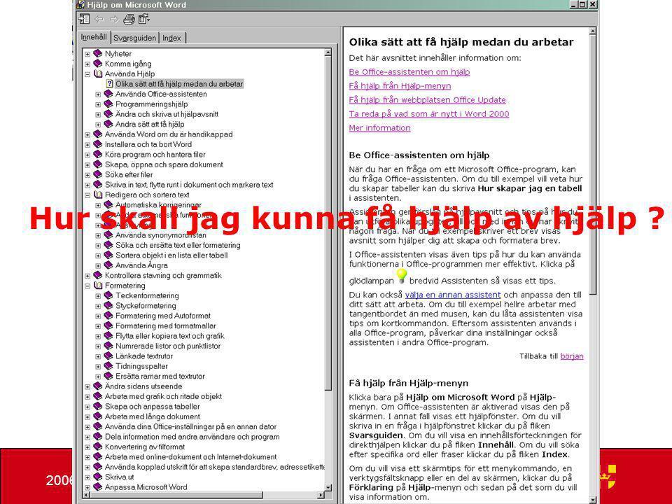 Hans Eskemyr2006-11-20 Hur mycket verksamhetsnytta ger • Word • Excel • Powerpoint • Outlook • Internet Explorer Och hur mycket mer skulle vi kunna få ut ?