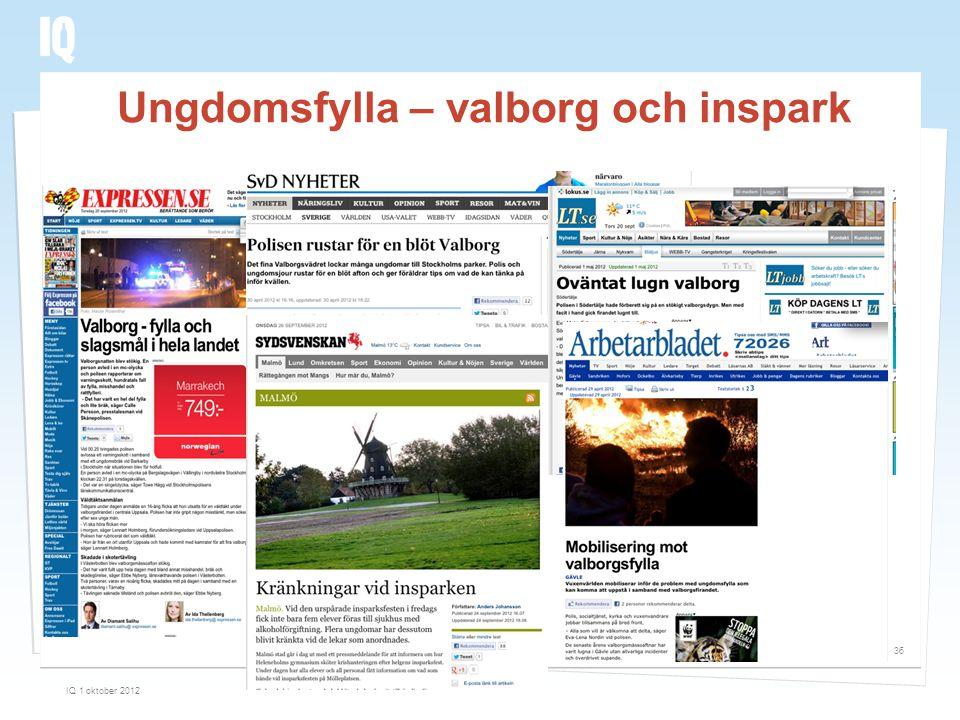 Ungdomsfylla – valborg och inspark IQ 1 oktober 2012 36