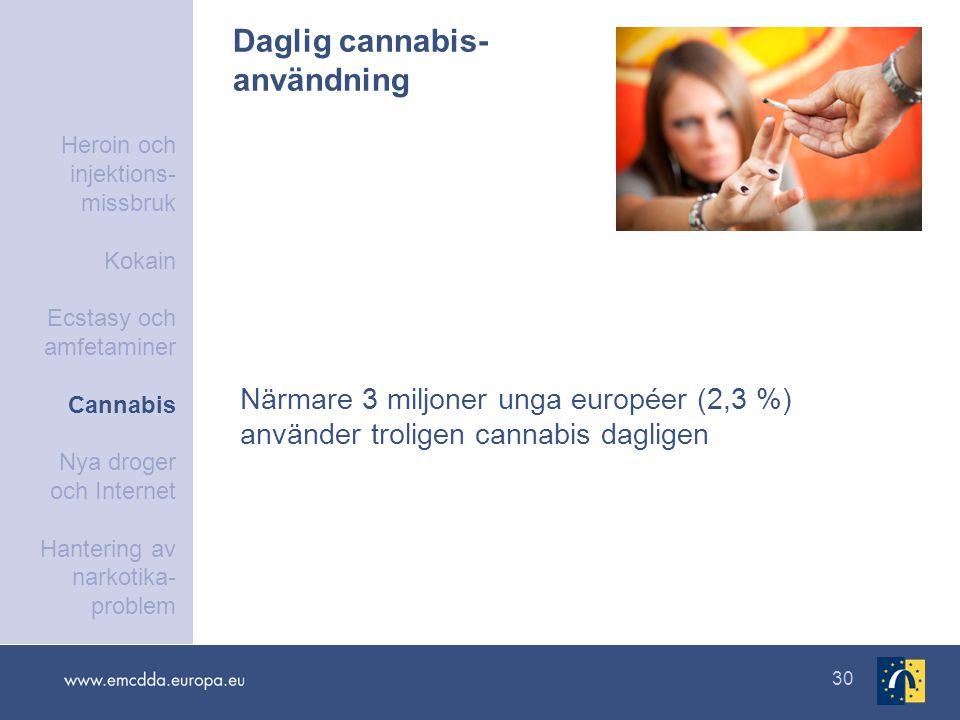 30 Daglig cannabis- användning Närmare 3 miljoner unga européer (2,3 %) använder troligen cannabis dagligen Heroin och injektions- missbruk Kokain Ecstasy och amfetaminer Cannabis Nya droger och Internet Hantering av narkotika- problem