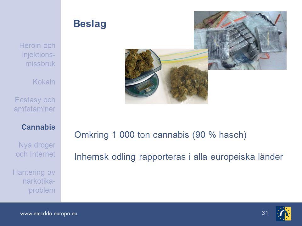 31 Beslag Omkring 1 000 ton cannabis (90 % hasch) Inhemsk odling rapporteras i alla europeiska länder Heroin och injektions- missbruk Kokain Ecstasy och amfetaminer Cannabis Nya droger och Internet Hantering av narkotika- problem
