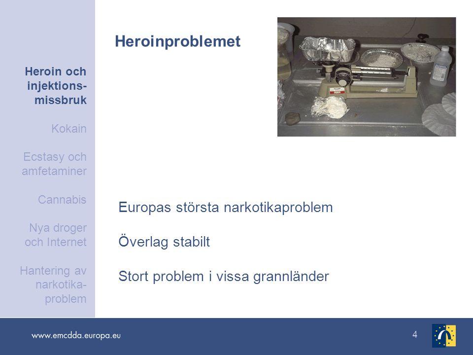 25 Regionala skillnader i användningsnivåer och mönster för problematisk amfetaminanvändning i Europa Heroin och injektions- missbruk Kokain Ecstasy och amfetaminer Cannabis Nya droger och Internet Hantering av narkotika- problem