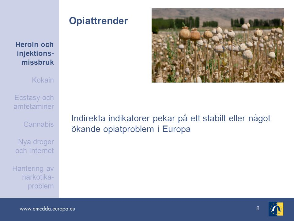 8 Indirekta indikatorer pekar på ett stabilt eller något ökande opiatproblem i Europa Opiattrender Heroin och injektions- missbruk Kokain Ecstasy och amfetaminer Cannabis Nya droger och Internet Hantering av narkotika- problem