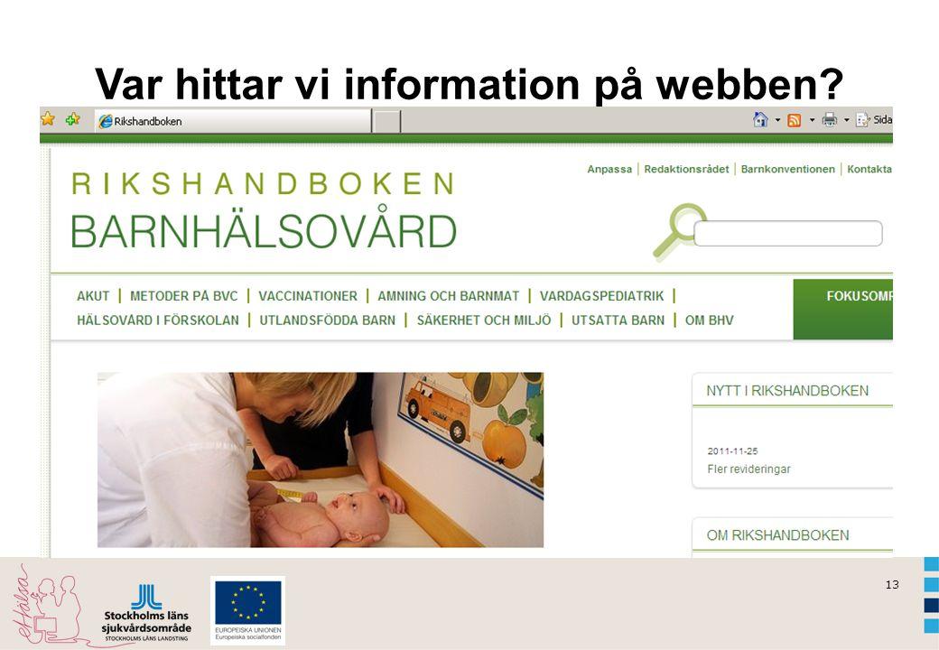 13 Var hittar vi information på webben?