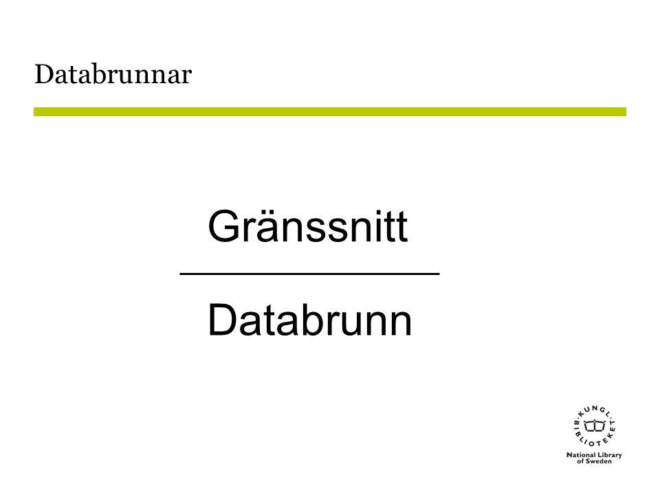 Gränssnitt Databrunn