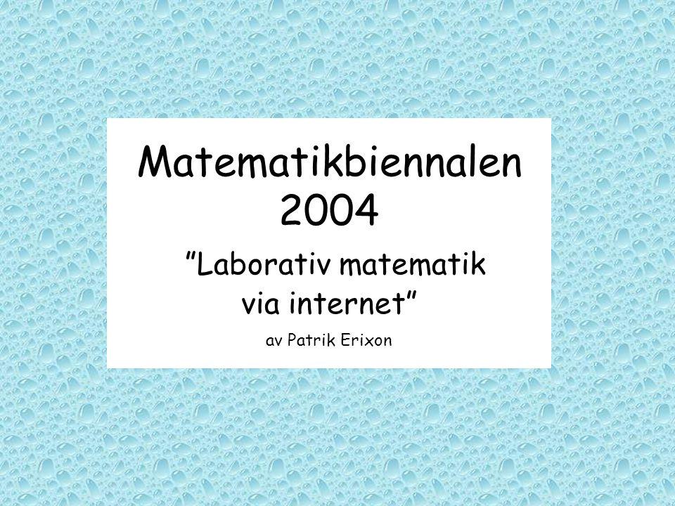 "Matematikbiennalen 2004 ""Laborativ matematik via internet"" av Patrik Erixon"