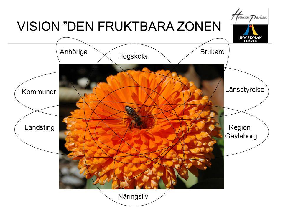 """VISION """"DEN FRUKTBARA ZONEN Kommuner Landsting Högskola Länsstyrelse Region Gävleborg Näringsliv AnhörigaBrukare"""
