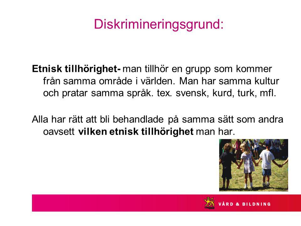 Diskrimineringsgrund: Etnisk tillhörighet- man tillhör en grupp som kommer från samma område i världen.