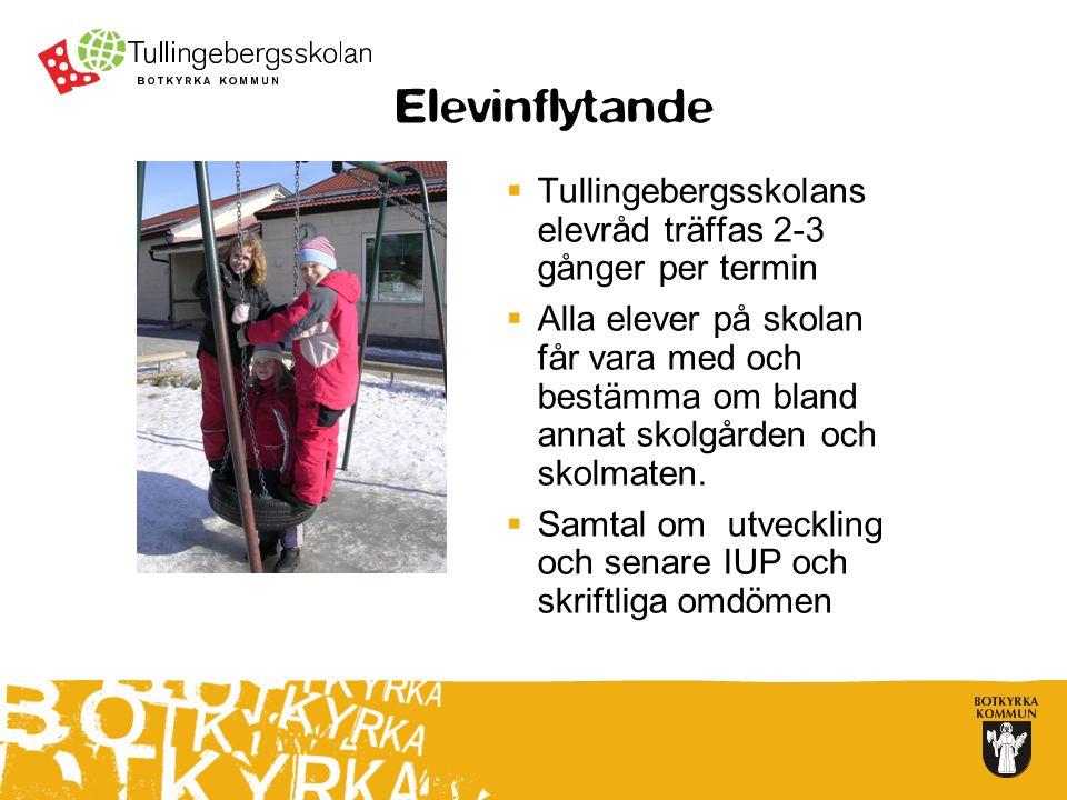 Elevinflytande  Tullingebergsskolans elevråd träffas 2-3 gånger per termin  Alla elever på skolan får vara med och bestämma om bland annat skolgården och skolmaten.