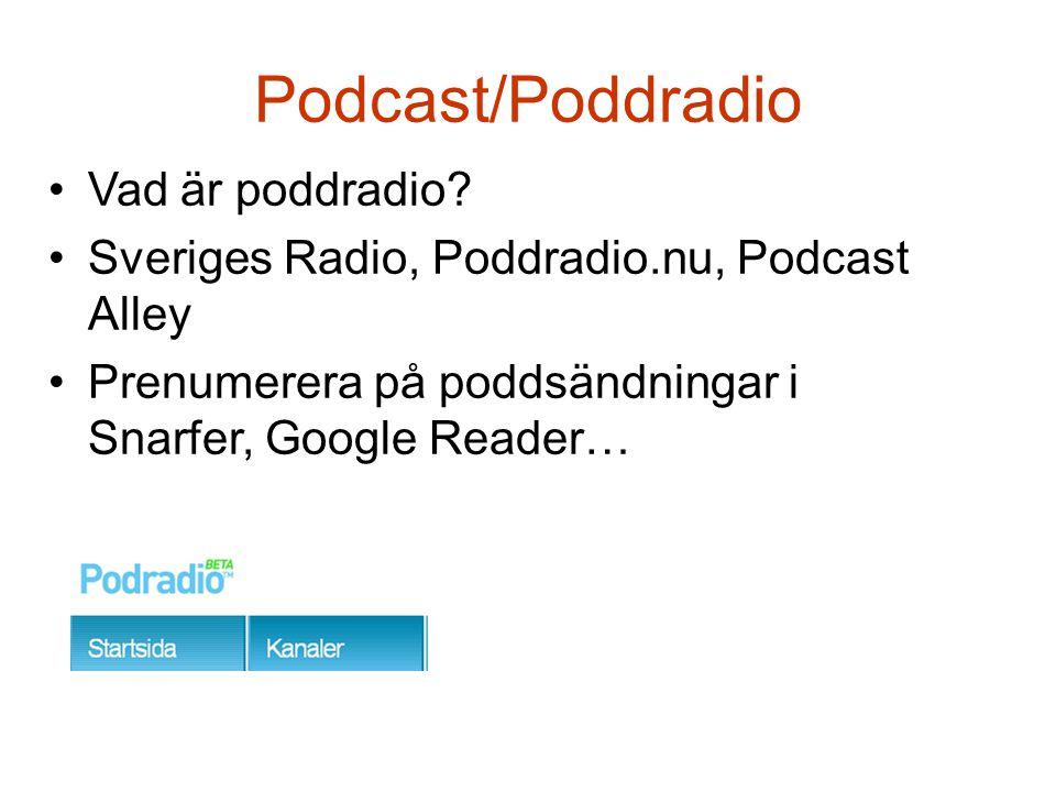 Mediaspelare •På högskolan: Windows Media Player, Real Player…mfl •Hemma: iTunes, Doppler, Juice…mfl •Bärbar mp3-spelare