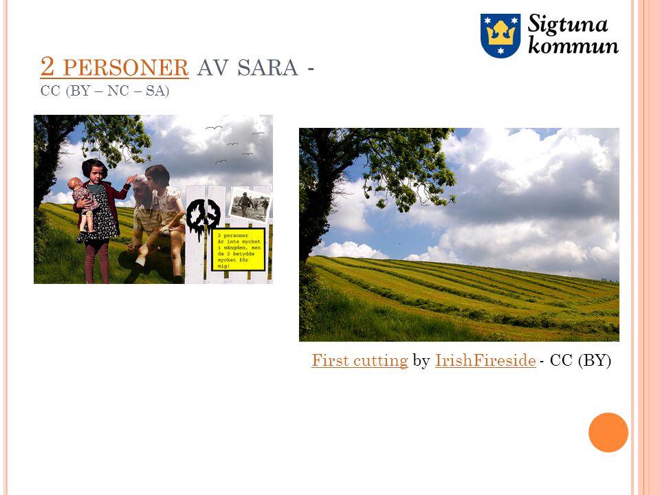 2 PERSONER 2 PERSONER AV SARA - CC (BY – NC – SA) First cuttingFirst cutting by IrishFireside - CC (BY)IrishFireside
