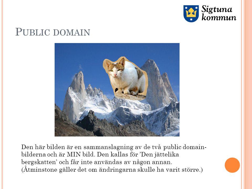 P UBLIC DOMAIN Den här bilden är en sammanslagning av de två public domain- bilderna och är MIN bild.