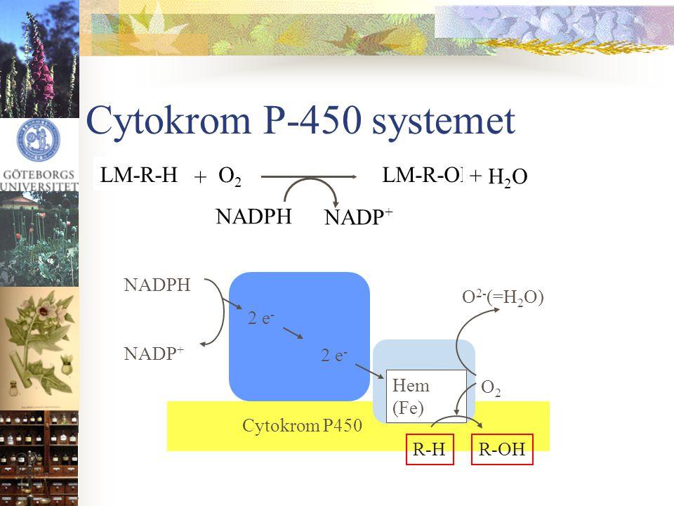 Cytokrom P-450 systemet Hem (Fe) NADPH NADP + 2 e - O2O2 R-H O 2- (=H 2 O) R-OH Cytokrom P450 NADPH NADP + O2O2 LM-R-H + H2OH2O LM-R-OH +