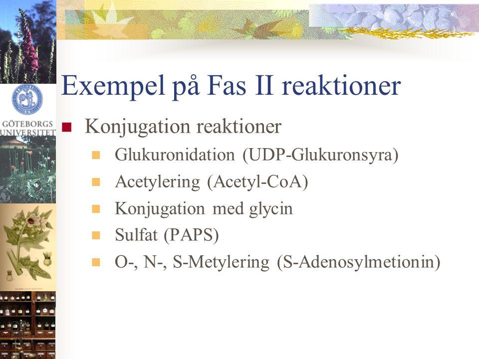Exempel på Fas II reaktioner  Konjugation reaktioner  Glukuronidation (UDP-Glukuronsyra)  Acetylering (Acetyl-CoA)  Konjugation med glycin  Sulfa