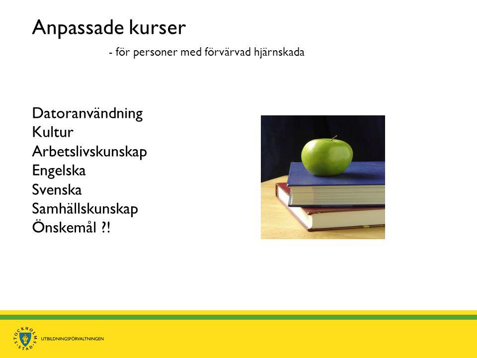 Anpassade kurser - för personer med förvärvad hjärnskada Datoranvändning Kultur Arbetslivskunskap Engelska Svenska Samhällskunskap Önskemål ?!